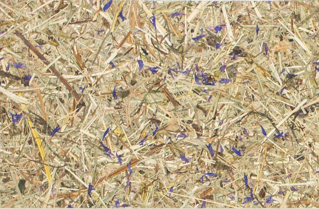 Organoid® Natural Wallpaper WILDSPITZE Himmelblau