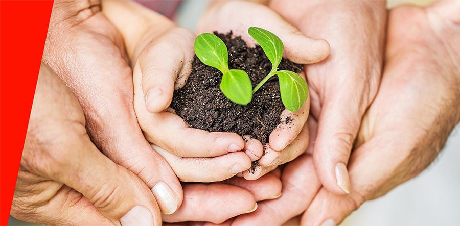 Nachhaltigkeit Hand in Hand